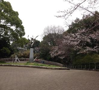 0324sakura.jpg